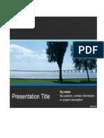 presentation template.pdf