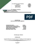 Informe Final Delitos Medio Ambiente