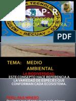 Diapositiva de Contaminacion Ambiental