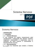 aulasistemanervoso-110923223805-phpapp01