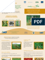 Semillas Certificadas de granos básicos, Las Segovias-Nicaragua, 2014