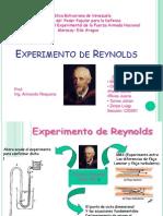 Experimento de Reynolds (Presentacion).pptx