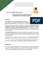 Orientaciones Para Elaboracion de CDE