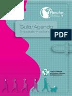 Plfiv Ab Agenda Embarazada