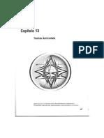 Capítulo 13 - Motta e Vasconcelos - Teorias Ambientais