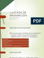 Cascada de Inflamacion