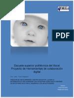 Proyecto de Herramientas de Colaboración Digital (1)