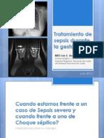 Tratamiento Sepsis 2014 Angeles