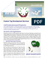 014 Custom Tag Development Fact Sheet