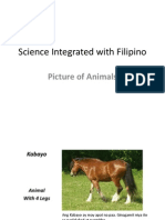 Science Integrated With Filipino