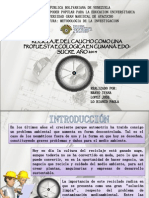 Presentacion Del Proyecto Ivana Okkk