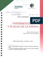 Manual de Enfermedades de La Papaya