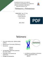 Exposición Telómeros y Telomerasas.