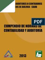 LibroNormasdeAuditoriaCAUB2014