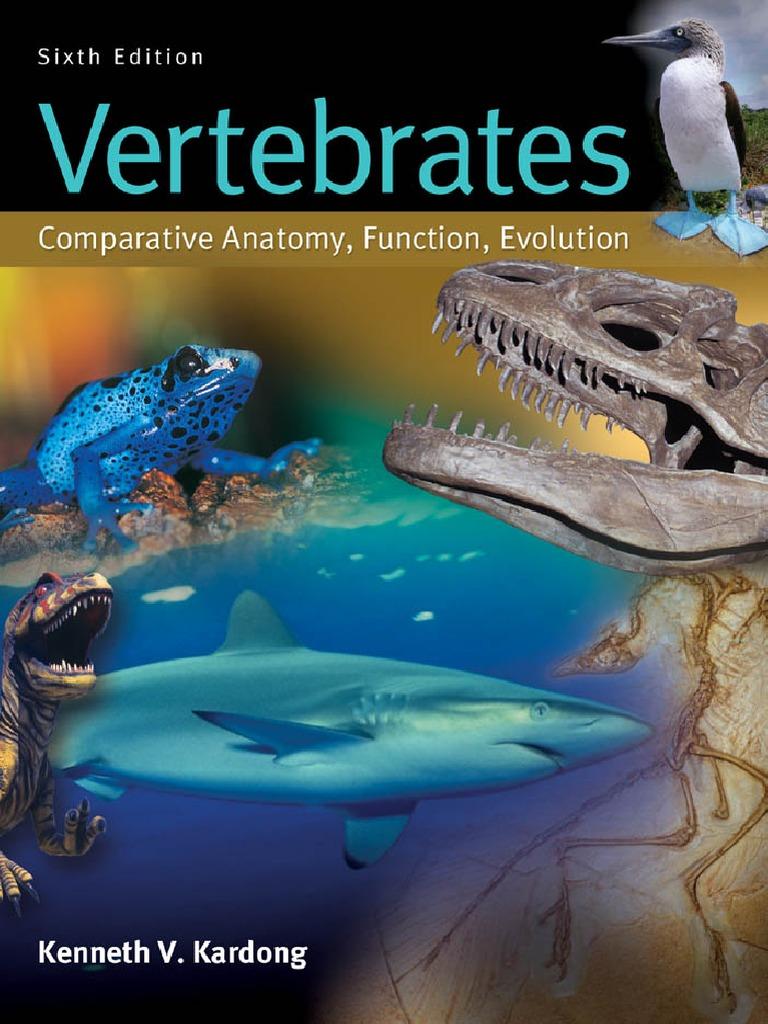 Kardong Vertebrates Comparative 6th 1   Reproductive System ...