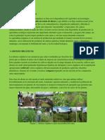 agricultura orgnica editado