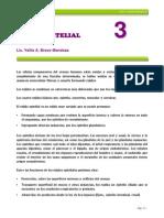 Cap 3_tejido Epitelial Final
