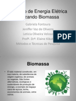 Monografia_Biomassa