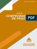 Lv2013 Guia Comprobantes Pago