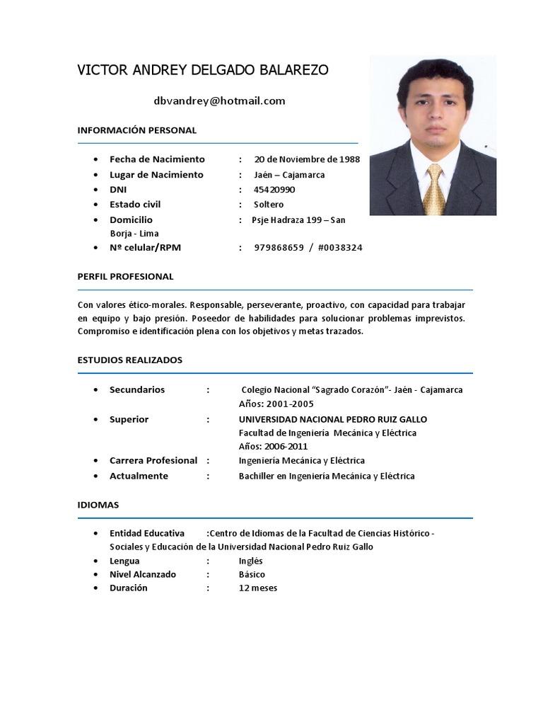 Curriculum Vitae Victor Delgado Balarezo