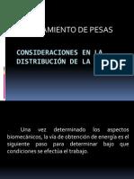 Consideraciones en La Distribución de La Carga (1)