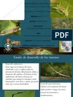 Desarrollo Cristian Pincay