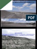5) Restauracion forestal.pdf