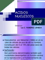ACIDOS NUCLEICOS1