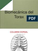 Biomecánica Del Torax y La Respiración 2012