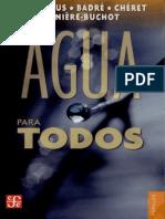 Michel Camdessus, Agua Para Todos (2004)