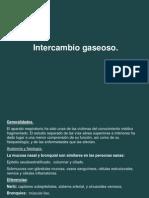 FISIOIntercambio_gaseoso (1)