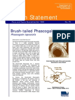 079 Brush-tailed Phascogale 1997