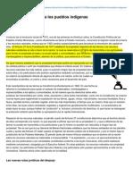 Contralinea.info-El Despojo Definitivo a Los Pueblos Indgenas