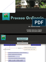 Proceso Ordinario