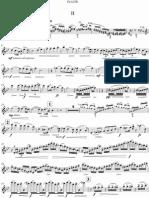 Sibelius Violin Concerto - Flute arrangement