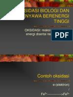 Oksidasi Biologi Dan Senyawa Berenergi