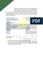 Investigacion Produccion Mas Limpia Sistemas III