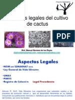 Aspecto Legal Cultivo Cactus
