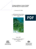 NSW Seagrass Replanting Failure in 2008