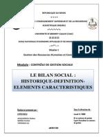 Le Bilan Social Historique Définition Éléments Caractéristiques