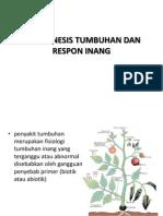Patogenesis Tumbuhan