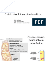 BIO_ciclo_tricarboxilicos_010_001.ppt