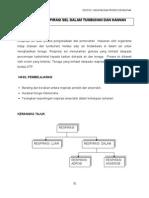 Topik 6 Respirasi Sel Dalam Tumbuhan Dan Haiwan