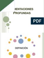 Cimentaciones Profundas - Exposición 111111