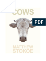 04-Stokoe Matthew - Cows