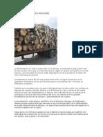 Deforestacion Del Rio Amazonas