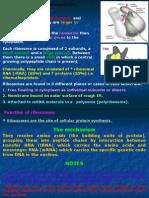 Biomedical 05