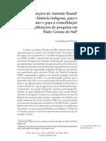 Contribuições de Antonio Brand.pdf