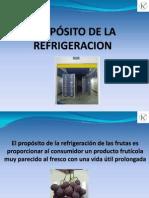 Capacitacion Frigorifico 2