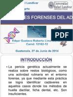 Aplicaciones Forenses Del ADN